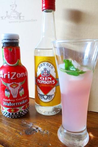 mojito gin et arizona