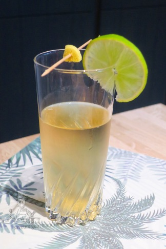 Gin Ginger Ale 1